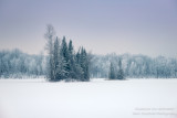 Rime Frost at Audie Lake 1