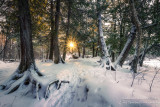 Winter walk along the Flambeau river