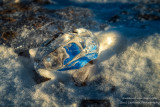 Lake Superior Ice Agates 9