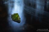 Mossy rock in a stream of light