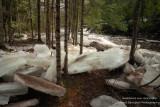 Ice chunks along the Tyler Fork river