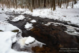 Creek with the last of the snow 1
