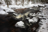 Creek with the last of the snow 3