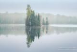 Foggy morning scene, Audie Lake 1