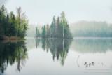 Foggy morning scene, Audie Lake 3