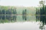 Foggy morning scene, Audie Lake 4