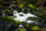 Creek and mossy rocks