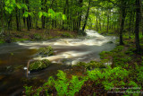Creek after rainfall 3