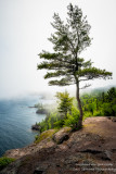 A foggy day along the shoreline of Lake Superior. View from Shovel Point at Tettegouche State park 2