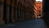 Bologna-Arches