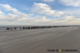 BeachEndurance-2019081.jpg