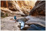 Escalante National Monument June 2020: Death Hollow