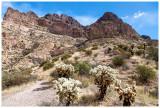 Tucson Hiking  and Tacos Weekend: February 2021