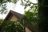 Lantern Among The Leaves