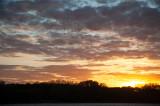Gees Flying In Western Sky