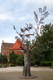 The Millenium Of Gdansk Tree
