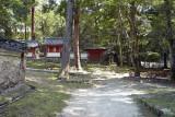 at near Kasuga shrine M8