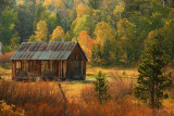 Hopeful Autumn