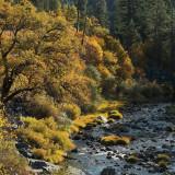 Autumn River Passage