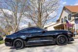 2016 Mustang GT PP1 (Gallery)