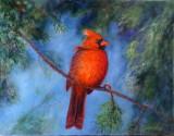 Cardinal à ma fenêtre 14 x 18 Collection privée