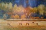 Chevreuils en couleurs 24x36 po.