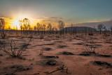 DSC_7171  Uluru