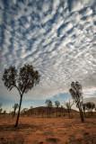 DSC_7209  Uluru