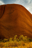 DSC_7464  Uluru