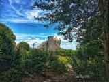 Yudell Botanical Gardens