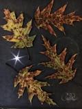 Camo Oak Leaves