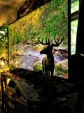 Virtual Trip Outdoors