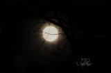 Full Moon Cloudy Skies