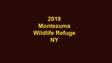 Montezuma SLIDESHOW VIDEO