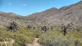 2019-07-14 Sunday Utah to Arizona RX408544 (RX10 IV)_dphdr.jpg