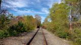 2019 Fall Foliage RX405422_dphdr.jpg