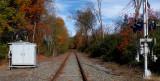 2019 Fall Foliage RX405485_dphdr.jpg