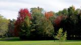 2019 Fall Foliage RX405530_dphdr.jpg