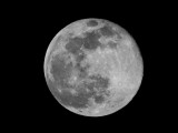 First Super Moon of 2020