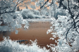 Willamette River view - infrared
