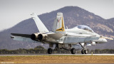 F/A 18 Hornet