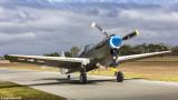 Curtis Kittyhawk P-40N