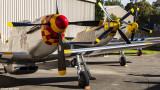 P-51D Mustang Replica