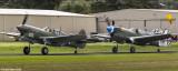Curtis P40 Kittyhawk and Warhawk