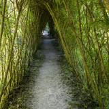 Covered Walking Path