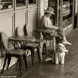 Coffee, Book & Dog