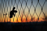 Guantes y manoplas