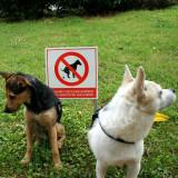 Prohibido cagar perros.