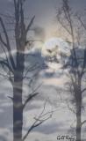 Mystery_Moon.jpg