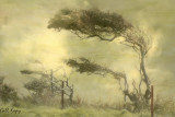 Foggy_tree